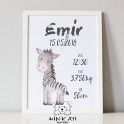 zebra doğum panosu