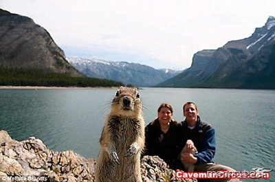 10_greatest_animal_photobombs_of_all_time_9