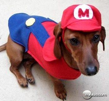 mario-puppy-costume_thumb