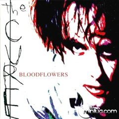 2000-bloodflowers