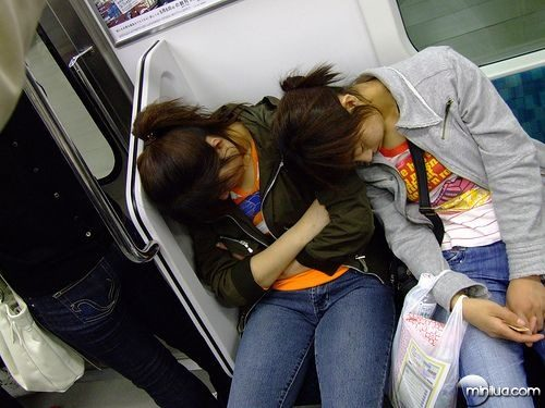 chinos-durmiendo-3