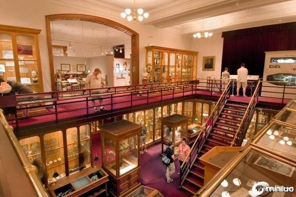 mutter-museum-philadelphia-587