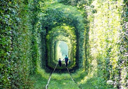 Tunnel-of-Love-in-Kleven