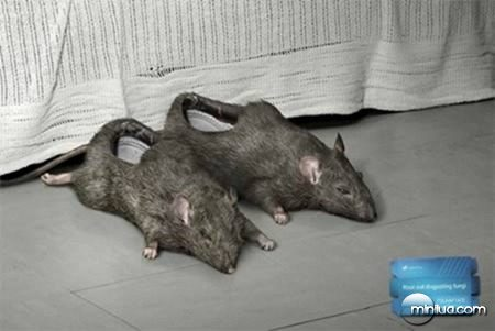 a98339_slippers_9-rat
