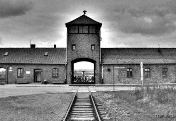 Auschwitz-Birkenau-5