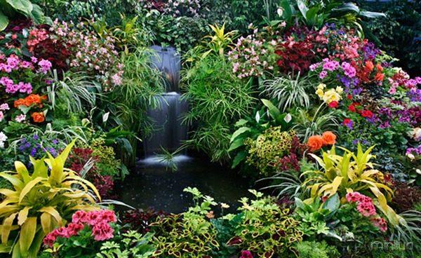 Butchart-Gardens-Photo