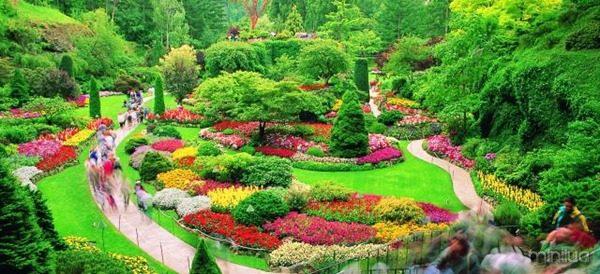 Butchart-Gardens