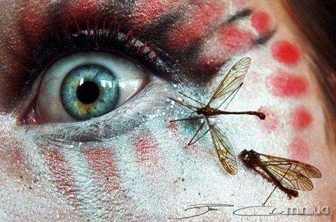 arte e maquiagem insetos_thumb[1]
