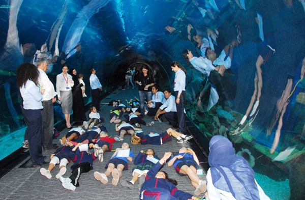 students-from-dubai-international-academy-during-the-education-prgoramme-at-dubai-aquarium-underwater-zoo