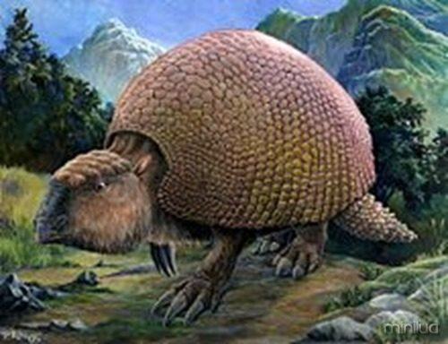 glyptodonte