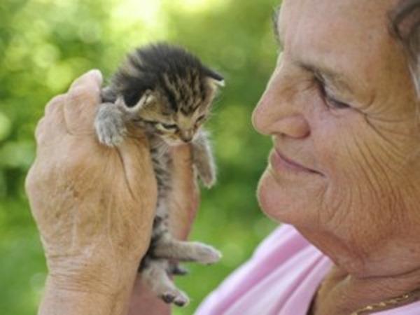 Pessoas-que-convivem-com-animais-possuem-coração-mais-saudável-300x225