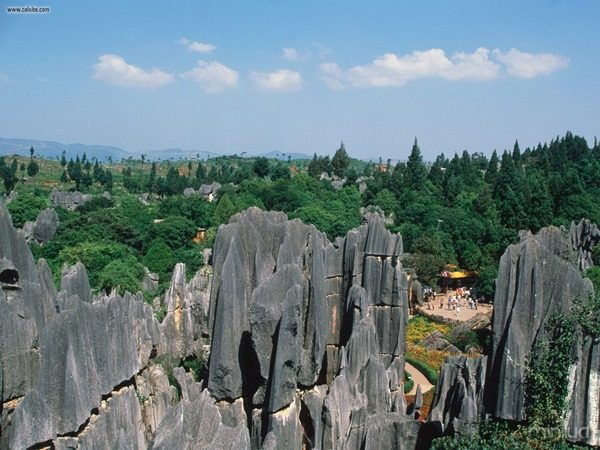 Stone_Forest_Yunnan_Province_China