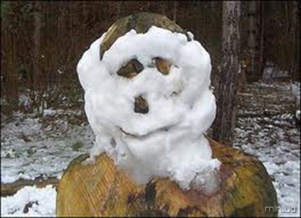 neve na cara