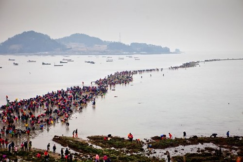 jindo-korea-parting-sea-festival_66691_600x450 (1)