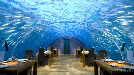 Maldives_restaurant_ithaa1
