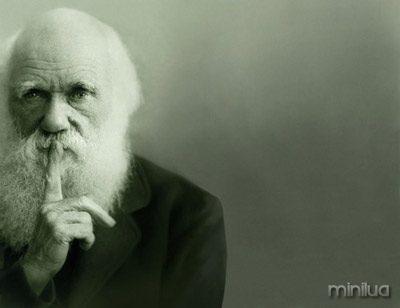 darwin_silence