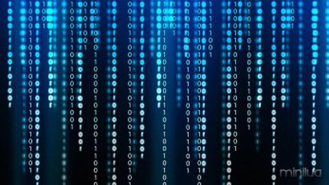 BinaryCodeFeature