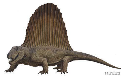 Dimetrodon_1
