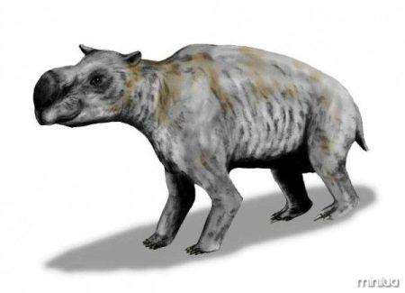 en.wikipedia.org-Diprotodon_BW-610x441