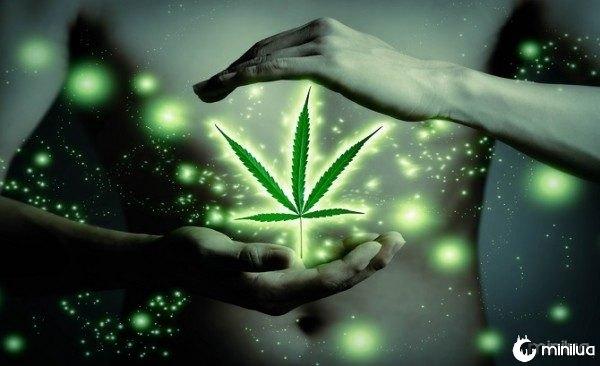 church-of-cannabis