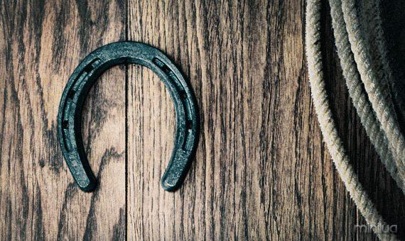 horseshoe-story