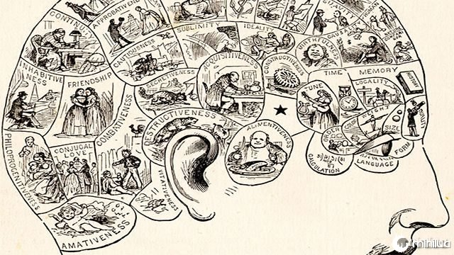 Phrenology: Read your friends head like a crystal ball