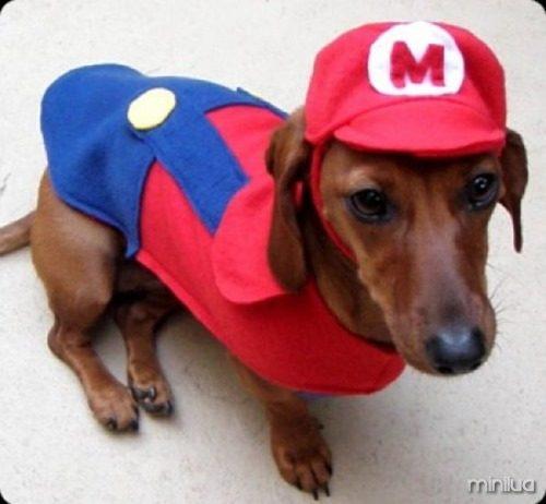 4-Mario