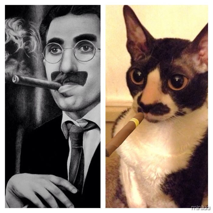 Groucho Marx And My Cat