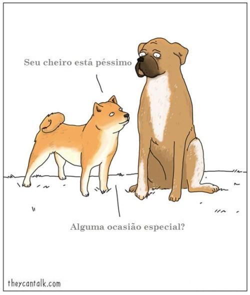 funny-animal-comics-they-can-talk-jimmy-craig-8-57469f7a498ba__605