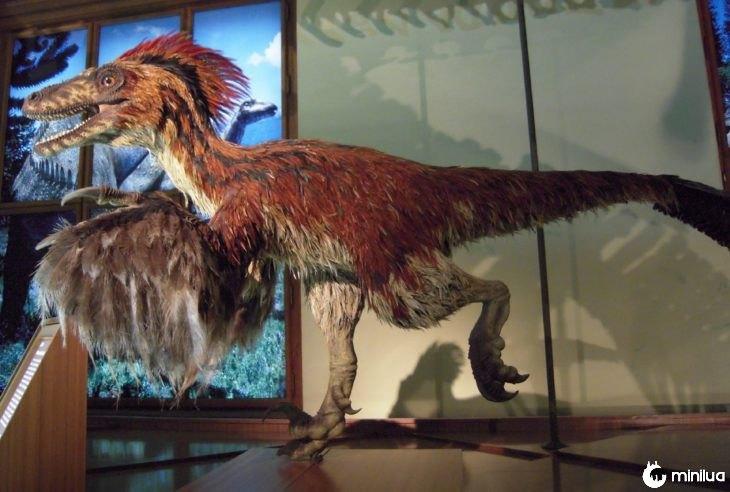 dinossauro com penas