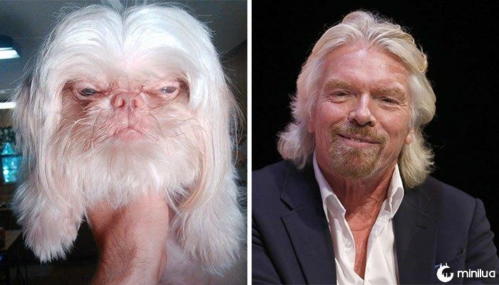 O cão olha como Richard Branson