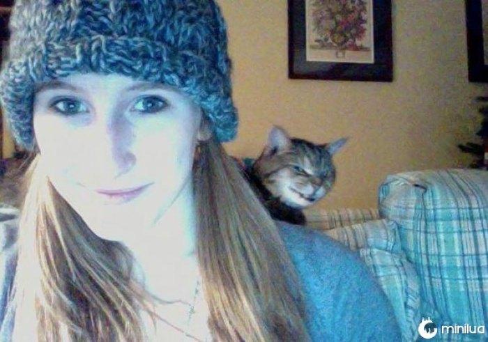 Gato engraçado Photobombs