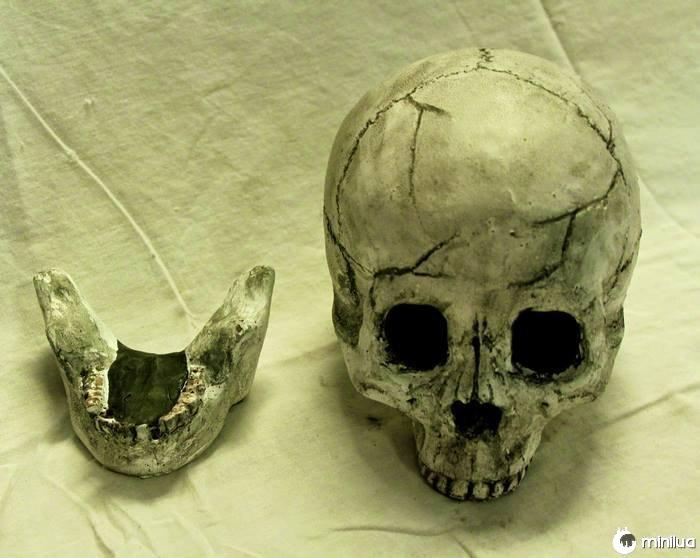Skull-fire-pit-formação-criações-10
