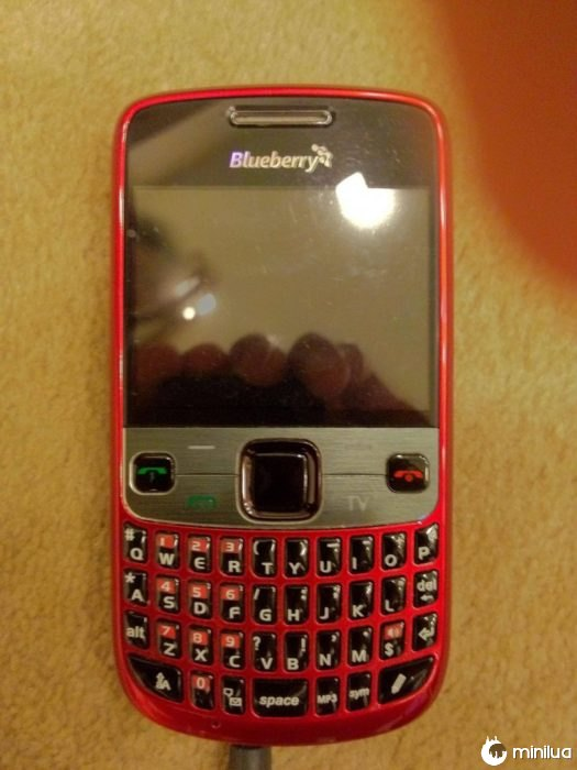 blackberry pirata
