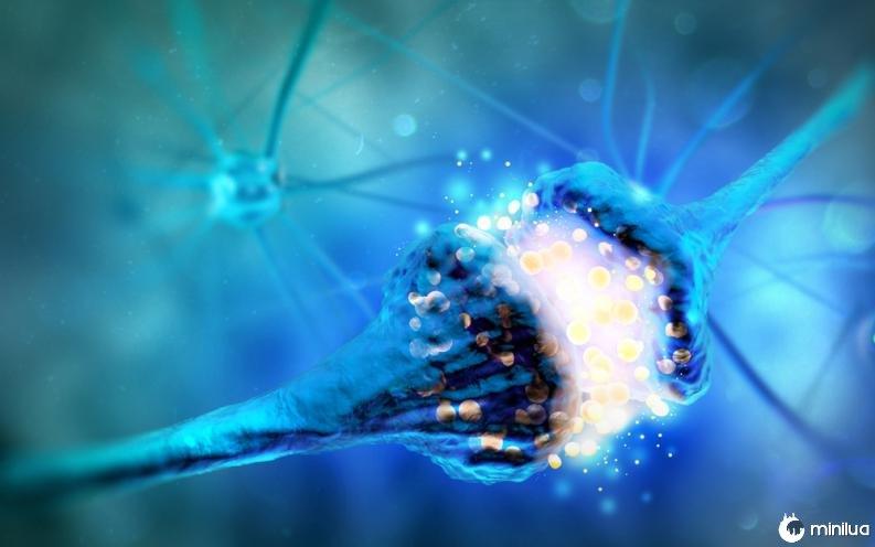 Imagen de neuronas haciendo sinapsis