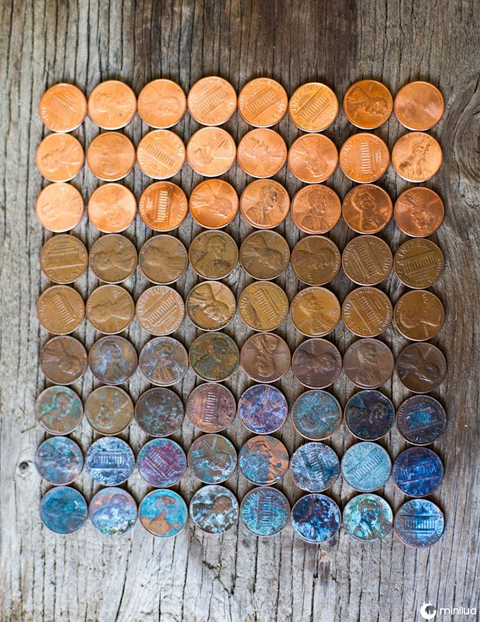 The Life Cycle Of A Penny