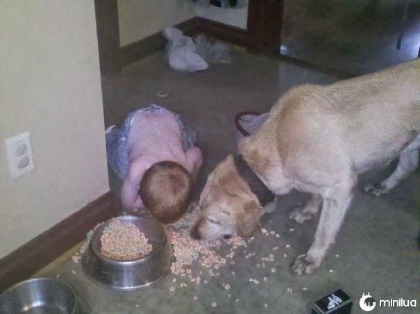 Kid Enjoying A Dogfood Bonanza
