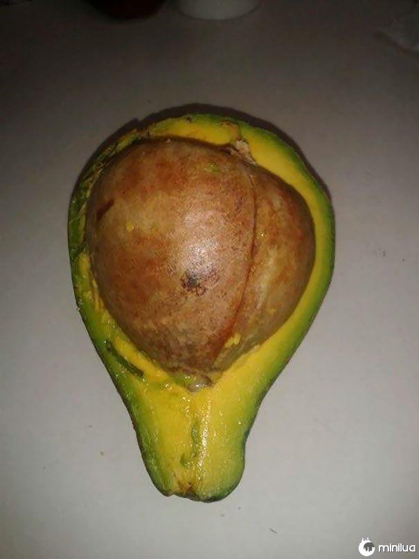 Eu escolhi o maior abacate para fazer guacamole, eu acho que não vai acontecer