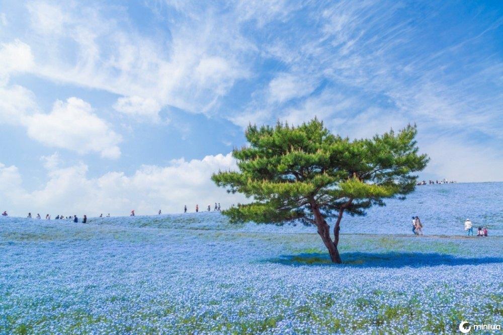 15 fotografias beleza do mundo 7