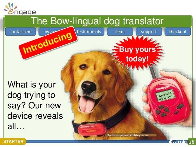 Produtos cães - Tradutor latindo