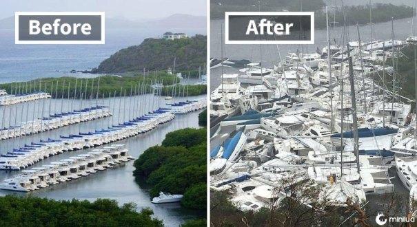 Paraquita Bay (Antes e Depois de Irma Damage)