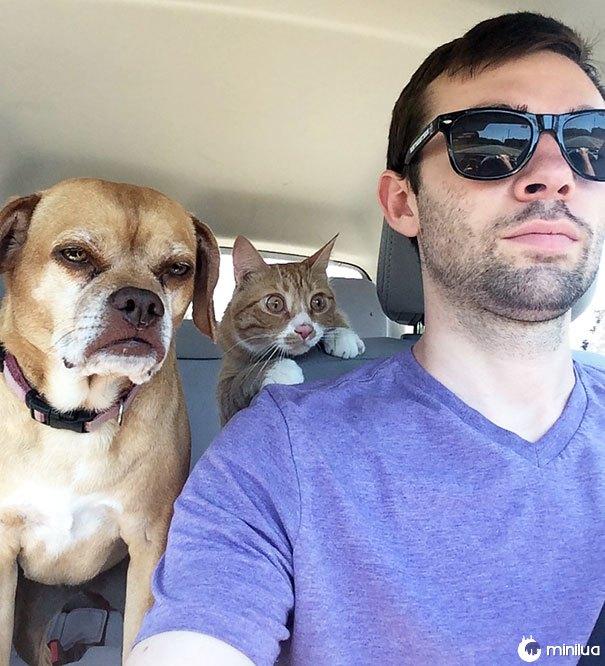 Qual deles tem sua primeira viagem ao veterinário?