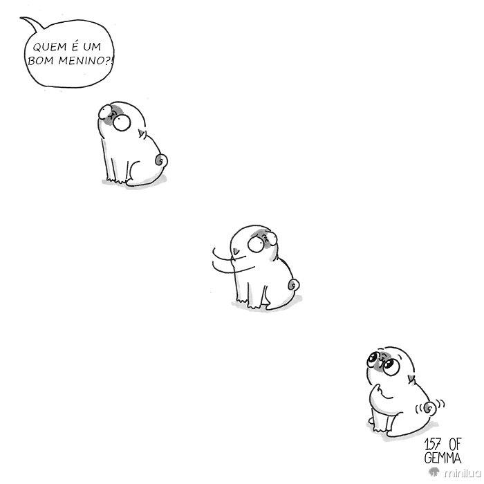 Viver-com-um-cachorro-02