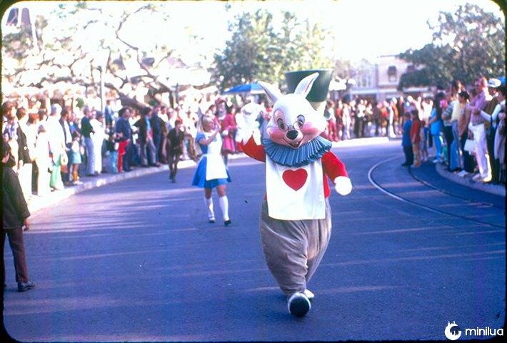 Disney vintage 24