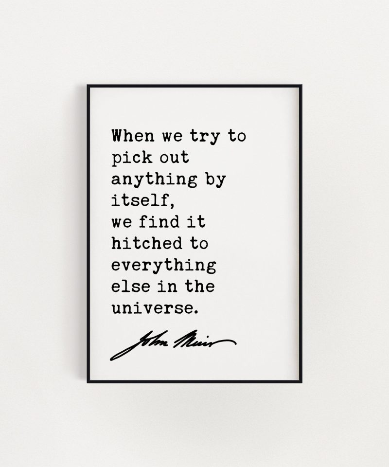 John Muir Quote - When we try to pick out anything by itself, we find it hitched to everything else in the universe. Art Print