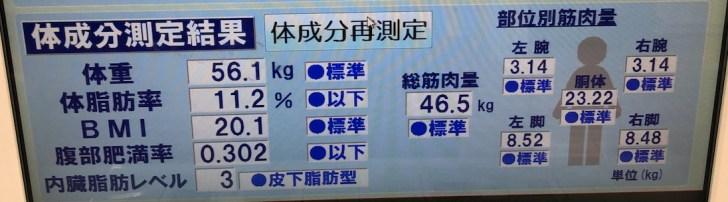 プチ断食(リーンゲインズ)中の体脂肪率などのデータ