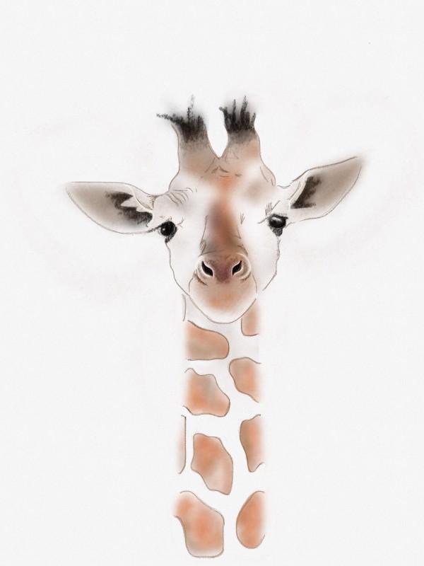 Gustaf Giraffe 02 Illustration by Nic Pinguet