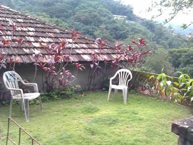 JungleHouse2.0's front garden