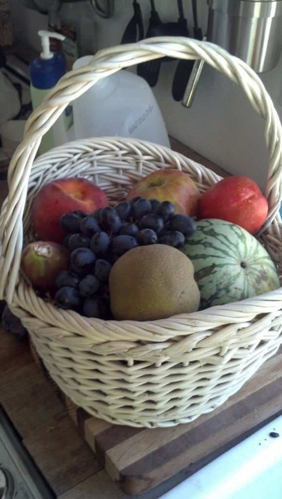 Nater also got me a fruit basket for my birthday, it has all sorts of things I've never had that are delicious!  That watermelon is yellow inside and SO good!