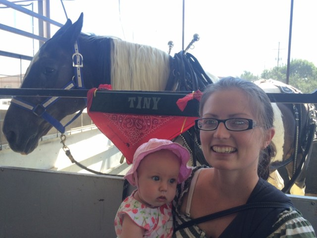We went to the fair and found a horse named 'Tiny', he won the draft horse challenge too!  Because we rooted for him! :)